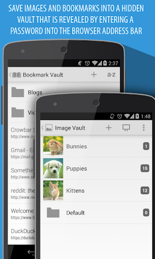 Frost Browser & Image Hider - screenshot