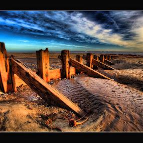 by Steve BB - Landscapes Beaches ( humberside, spurn point, sky, holderness, wood, groynes, yorkshire, beach, landscape )