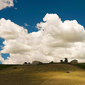 Italian colors by Marco Parenti - Landscapes Prairies, Meadows & Fields ( countryside, landscape, italy,  )