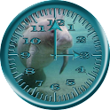 Manatee 4 AnalogClock Donation icon