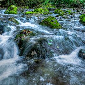 Speed Water by Siniša Biljan - Nature Up Close Water