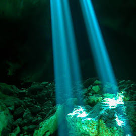 Spot Lights by Shaun Peterson - Landscapes Underwater
