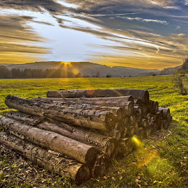 by Ralf Harimau Weinand - Landscapes Prairies, Meadows & Fields