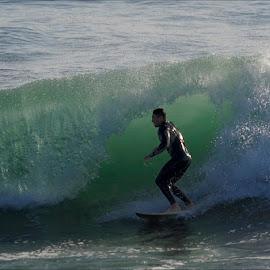 La Jolla Surfer by Dub Scroggin - Sports & Fitness Surfing ( surfing, surfer, pacific ocean, surf, la jolla )