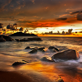 golden beach by Dany Fachry - Landscapes Beaches ( beaches, waterscape, waves, seascape, landscapes,  )