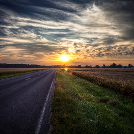 Morning Sky in a Bean Field Road by Adam Favre - Landscapes Sunsets & Sunrises ( field, hdr, sunrise, morning, litchfield )
