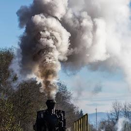 Povesti de toamna cu Hutulca... by Sveduneac Dorin Lucian - Transportation Trains (  )