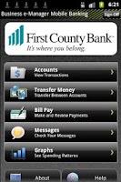Screenshot of Business e-Manager