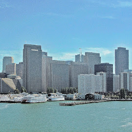 San Francisco  by Andrea Riccobene - City,  Street & Park  Vistas (  )