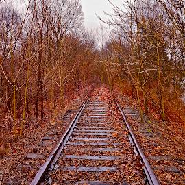 Rail to Nowhere by Wally VanSlyke - Transportation Railway Tracks