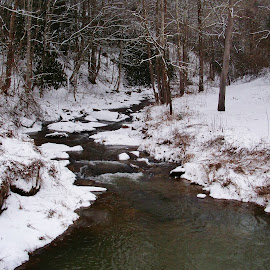 mtn stream by Delores Mills - Landscapes Weather ( stream, winter, snow )