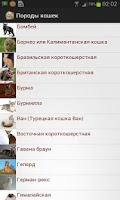 Screenshot of Породы кошек