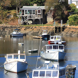Cottage Living by Sandie Lawler - Novices Only Landscapes ( ogunquit, perkins cove, maine, autumn, boats, 2014 fall )