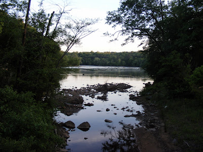 The River between some trees
