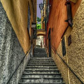 Portofino steps by Izzy Kapetanovic - Buildings & Architecture Other Exteriors ( buildings, portofino, steps, architecture, italy )