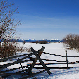 Valley Snow by Mark  R.  Worden - Landscapes Weather ( field, fence, winter, snow, desolation )