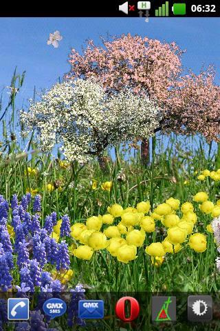 春天的花朵免費壁紙