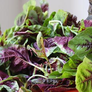 Amaranth Greens Recipes