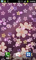 Screenshot of Cherry blossom  wallpaper free
