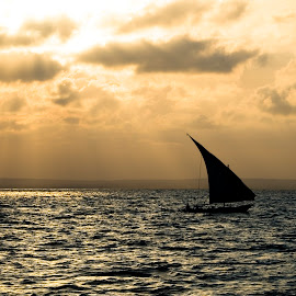 Taking a cruize by Werner Booysen - Transportation Boats ( clouds, waterscape, sea, ocean, sails, seascape, boat, sailboat, sail boat, sun rays, dhow, outdoor, sail, werner booysen,  )