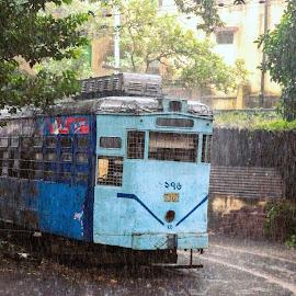 Tram by Ishani Barman - City,  Street & Park  Street Scenes