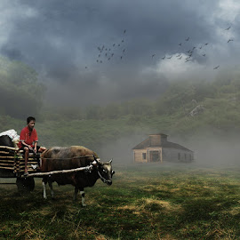 farmer back to home by Hermansyah Syah - Digital Art People