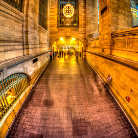 Golden Grand Central Station by Rafael Quirindongo - Buildings & Architecture Architectural Detail ( train station, grand central, train, nyc, metro north )