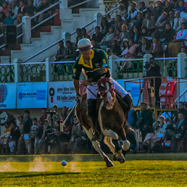 POLO2 by Kosygin Leishangthem - Sports & Fitness Other Sports (  )