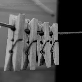 Clips... by Ivon Murugesan - Artistic Objects Clothing & Accessories ( clip, mamallapuram, clothing, artistic, pondicherry, object, objects, clips, chennai )