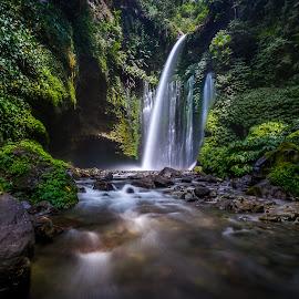 Sindang Gile @ Lombok  by CK NG - Landscapes Forests ( jungle, sindang gile, green, waterfall, fujinon 10-24mm f4.0, fuji x-t1, sendang gile )