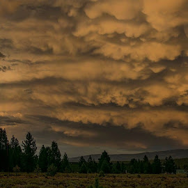 Before the Storm - Truckee, CA by Sam Okamoto - Landscapes Cloud Formations