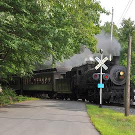 Watch for the train by Janice Burnett - Transportation Trains ( steam locomotive, train tracks, steam engine, steam train, scenic train ride )