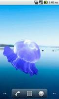 Screenshot of Jellyfish Sticker