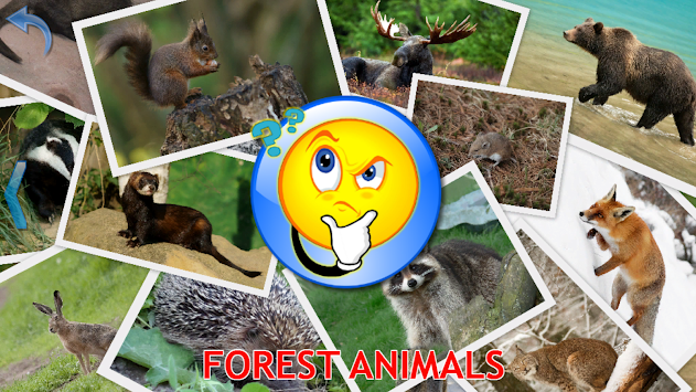 Animals For Kids - Flashcards APK screenshot thumbnail 5