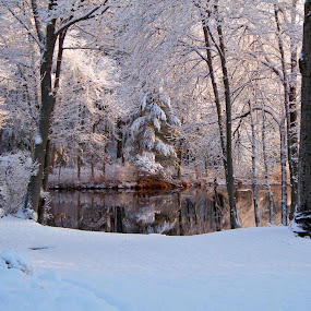 by Deanna Clark - Landscapes Weather ( winter, new england, ice, snow,  )