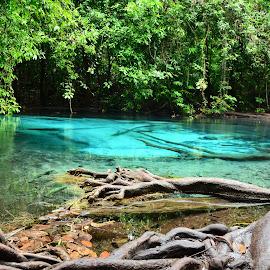 Blue Lagoon by Demetris Aipavlitis - Landscapes Forests ( lagoon, jungle, blue lagoon, thailand, lake, forest, paradise, river,  )