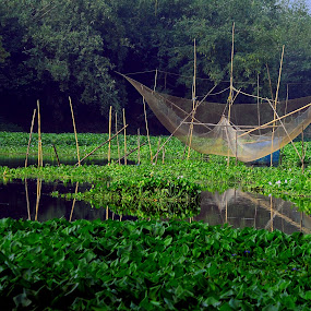 On the lap of nature by Subhasis Ghosh - Landscapes Waterscapes ( waterscape, india, scenery, fishing, landscape, river )