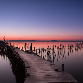 The ancient dock by Pedro Silva - Landscapes Waterscapes ( #alentejo, #carrasqueira, #portugal, #canon )