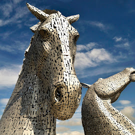 Beautiful Kelpies by Wendy Milne - Buildings & Architecture Statues & Monuments ( scotland, statue, kelpies, horses, beautiful )