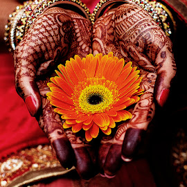 by Yogesh Waikul - Wedding Other