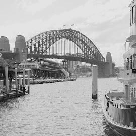 Sydney Harbour Bridge by Jerry Heger - City,  Street & Park  Historic Districts ( australia, white, bridge, black, sydney,  )