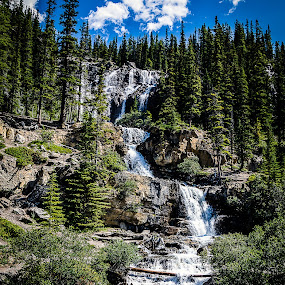 Tangle Creek Falls by Roni Franklin - Landscapes Waterscapes ( #waterfalls #jasper #banff #alberta #canada,  )