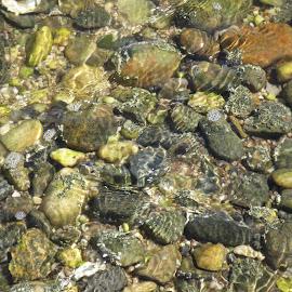 by Jennifer Peltz - Nature Up Close Rock & Stone