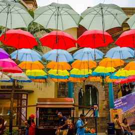 Raining Umbrellas by Sanjeev Goyal - City,  Street & Park  Street Scenes ( red, purple, blue, white, yellow )