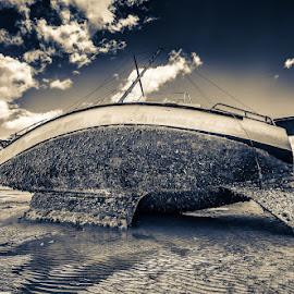 Barnacles V2 by Daryl James - Transportation Boats ( daryl james )