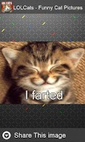 Screenshot of LOLCats - Funny cats pictures