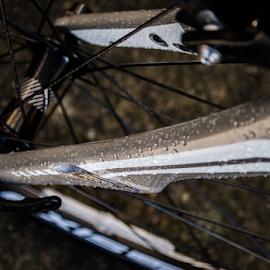 New Bike by Darren Hanks - Transportation Bicycles ( cycle, bike, specialized )