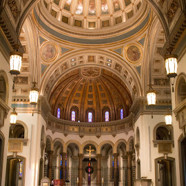 Cathedral of the Sacred Heart by Nancy Helms - Buildings & Architecture Places of Worship ( Architecture, Ceilings, Ceiling, Buildings, Building )