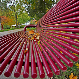 by Dipali S - Artistic Objects Furniture ( vertical, wood, bench, solitude, leaf, tree trunk, spring, iron, photography, comfortable, alley, color image, cold, clean, tree, metal, seat, autumn, park bench, empty, evening, park, green, city life, relaxation, rods, maple, new, red, sitting, vanishing point, outdoors, selective focus, summer, brown, outdoor chair, lifestyles, wide-angle lens, public, furniture, object )