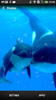 Screenshot of Sea World Live Wallpaper